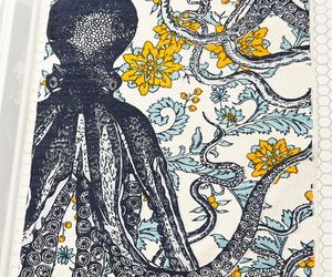 colors, colours, and octopus image