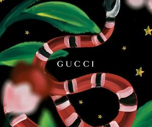 gucci, wallpaper, and snake image