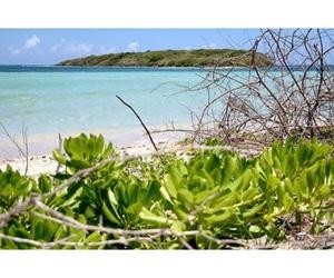 adventure, beach, and turismo interno image