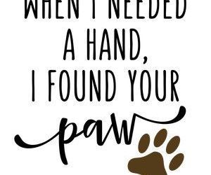 dog, quotes, and animals image