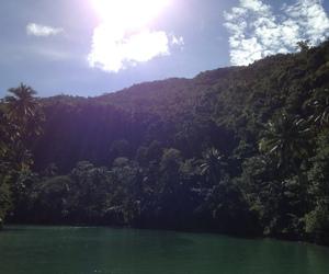 Philippines, tourism, and bohol image