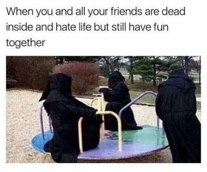 funny, meme, and friends image