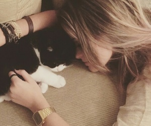 blond, cat, and cute image