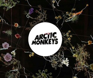 arctic, monkeys, and wallpaper image