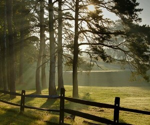country living, farm, and fence image