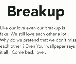 breakup, fake, and quotes image