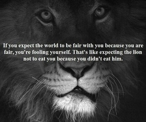 lion, quote, and world image