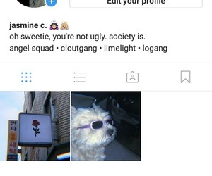 instagram, followback, and insta image