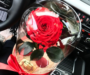 car, flower, and flowers love image