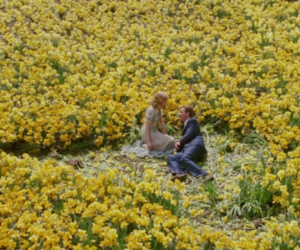 alison lohman, flowers, and jessia lange image