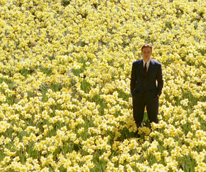 flowers, movie, and yellow image