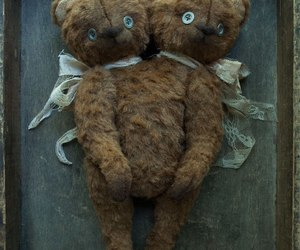 bear, curiosity, and two headed image