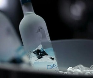 Cocktails and greygoose image