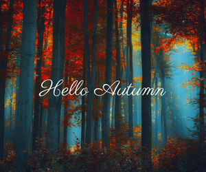 autumn, welcome, and fall image