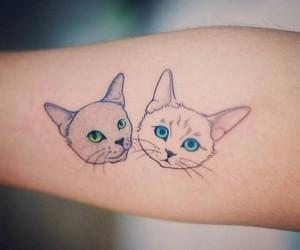 cat, tattoo, and tatto image