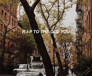 wallpaper, city, and Lyrics image