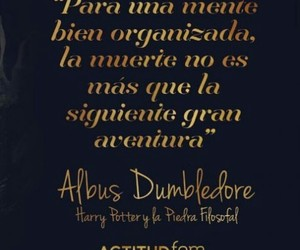 albus dumbledore, frases, and harry potter image