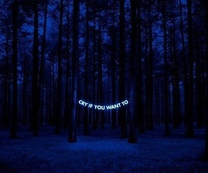 cry, blue, and dark image