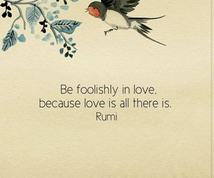 love, quotes, and Rumi image