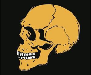 skull, smile, and skeleton image