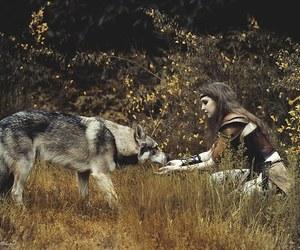 nature, wild, and animal image