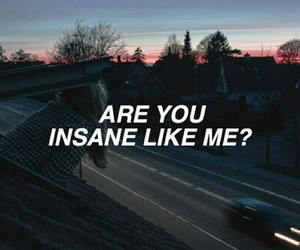 halsey, insane, and quotes image
