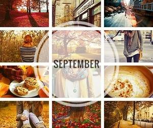 autumn, pumpkin, and rain image