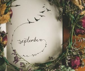 fall, hello, and autumn image