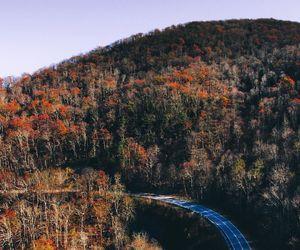 autumn, landscape, and roads image