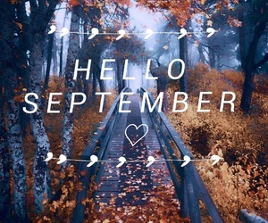 autumn, beautiful, and hello image