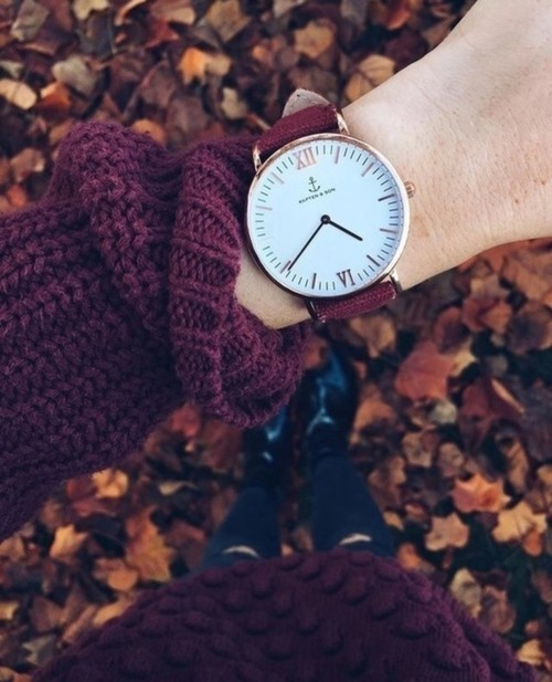 autumn, fall, and watch image