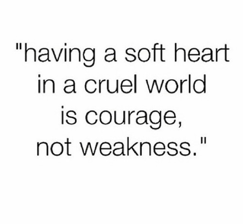 heart, courage, and quote image