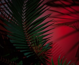 green, Hot, and red image