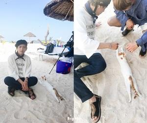 beach, kpop, and bts image