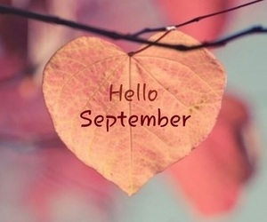 September, fall, and autumn image