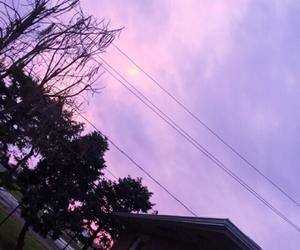 purple, sunset, and pink image