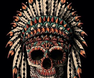 skull, feathers, and indian image