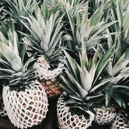 pineapple, fruit, and tumblr image