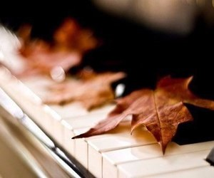 piano, autumn, and leaves image