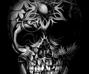 skull, art, and cool image
