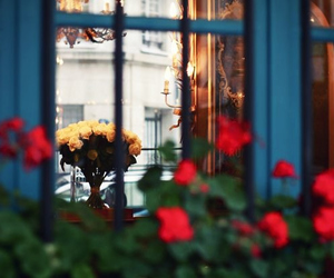 flowers, cafe, and france image