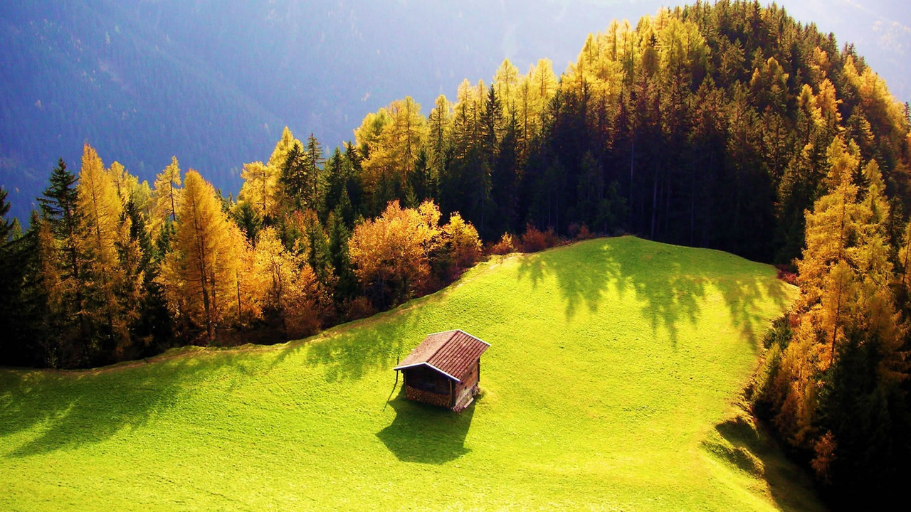 nature, green, and house image