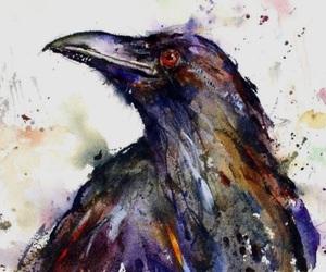 art, raven, and crow image