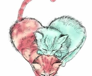cat and heart image