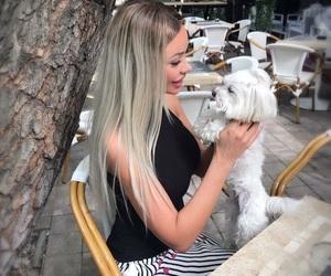 barbie, longhair, and whitedog image