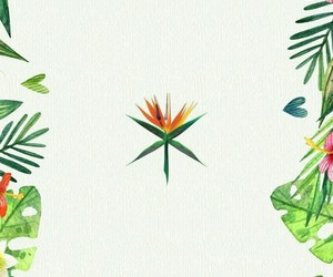 exo, kokobop, and wallpaper image
