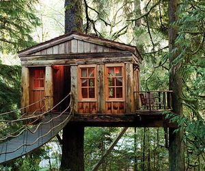 house, photography, and treehouse image