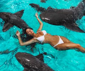 bahamas, holiday, and vacation image
