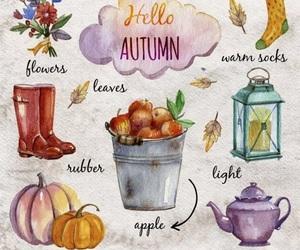 fall image