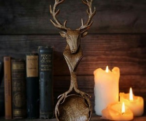 aesthetic, antlers, and candles image